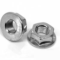 Exhaust Manifold Flange Nuts