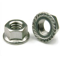 Stainless Steel Flange Nuts Manufacturers In India